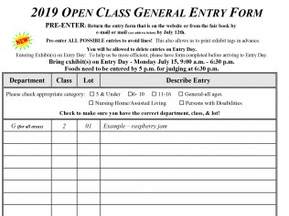 Open ClassGeneral Entry Form